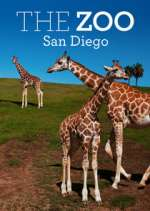 the zoo: san diego tv poster